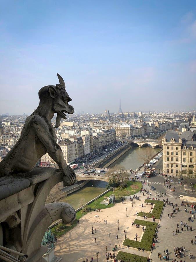 Wasserspeier und Schimäre im Luftstadtbild von Notre Dame-Kathedrale stockbild