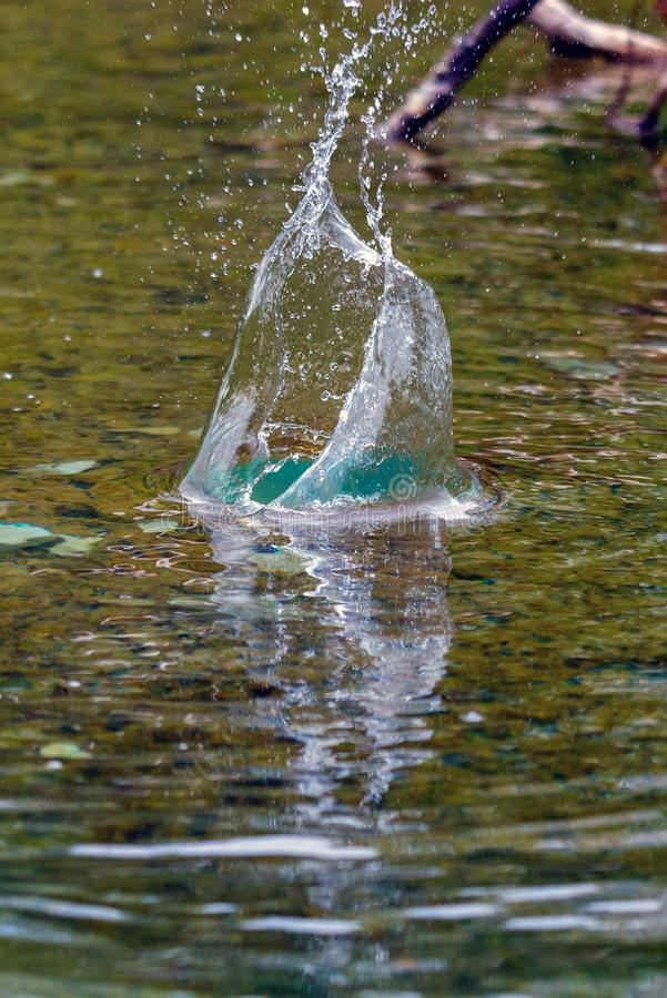 Wasserspritzen im Natursee lizenzfreies stockbild