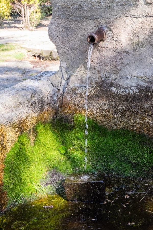 Wasserstrahl eine Quelle lizenzfreie stockfotos