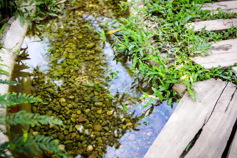 Wasserstrom im Garten lizenzfreie stockbilder
