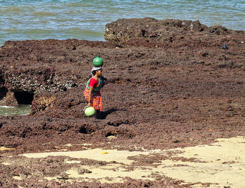 Wasserträger auf Strand stockbild