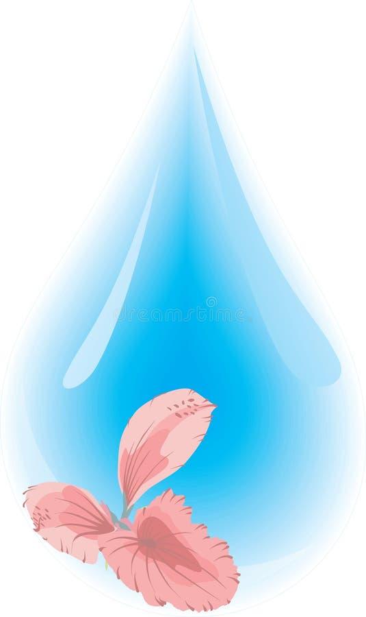 Wassertröpfchen vektor abbildung