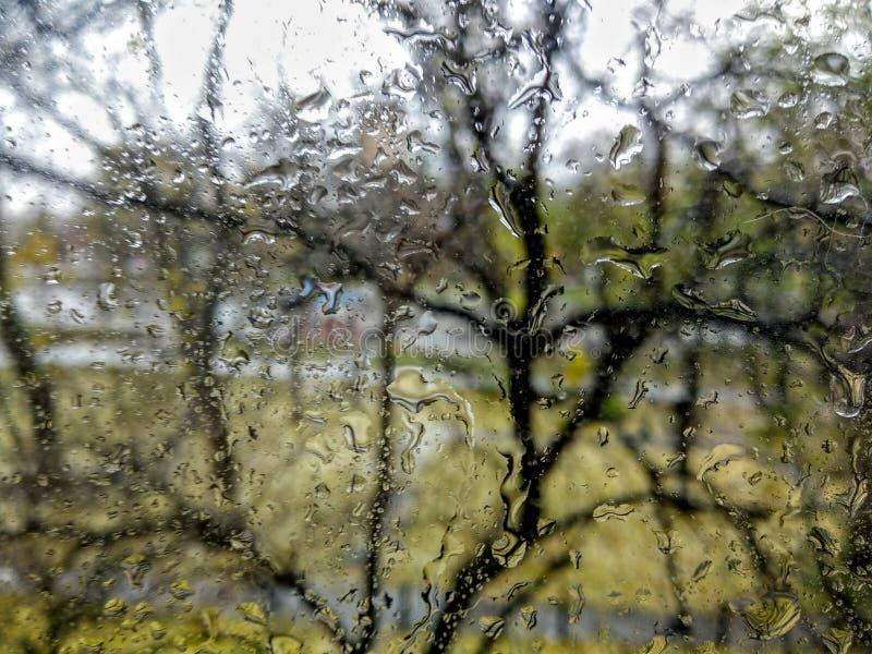 Wassertropfen auf dem Fenster stockfotografie
