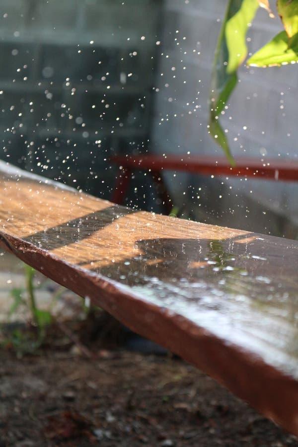 Wassertropfen nachdem dem Rainning lizenzfreies stockfoto