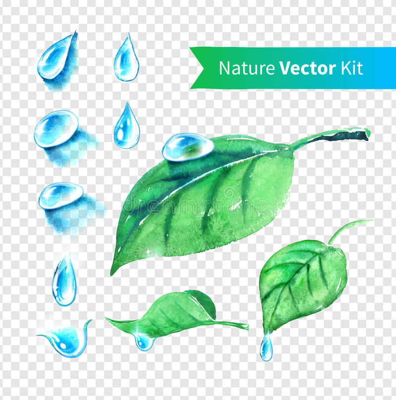 Wassertropfen und -blätter eingestellt vektor abbildung