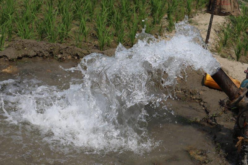 Wasserwasser überall stockfoto