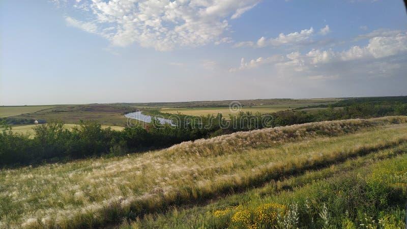 Wast fält korsade vid en flod royaltyfri fotografi