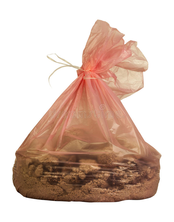 Waste bag of cat litter. A pink closed plastic bag with inside sand the cat litter with droppings inside. PNG available stock images