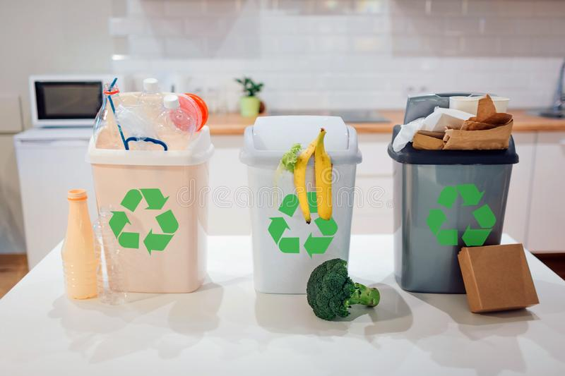 Waste sorting at home. Protect the environment. Colorful garbage bins with recycling icon full of plastic, food, paper royalty free stock photo