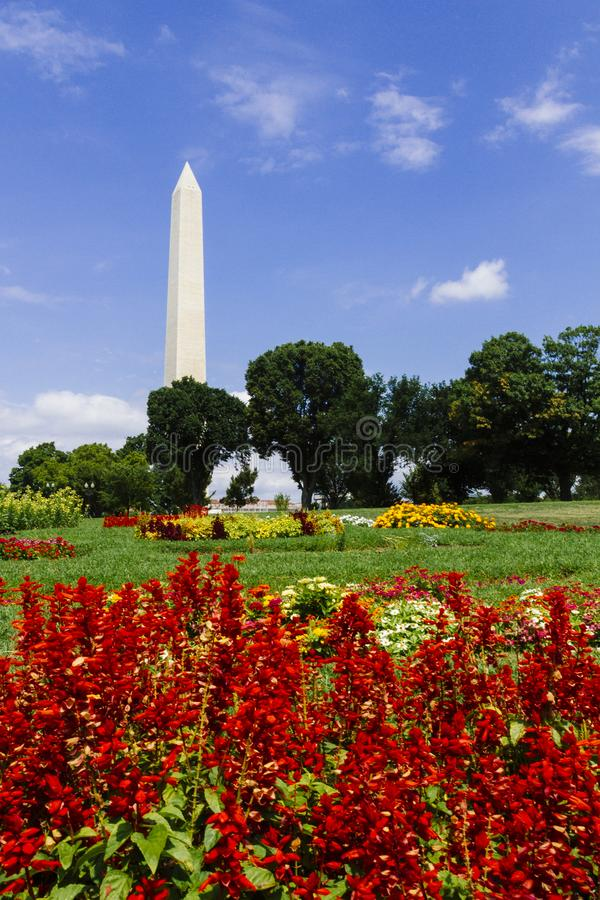 Waszyngtoński zabytek z rewolucjonistką Kwitnie w Washinton DC, usa obrazy stock