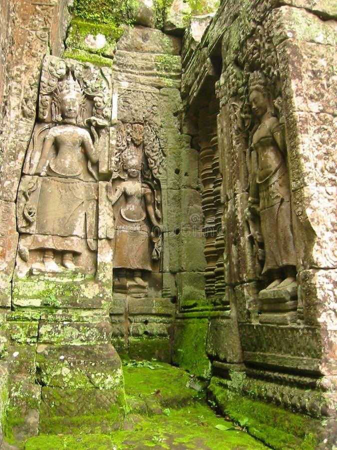 wat виска камней руин angkor мшистое стоковые изображения rf