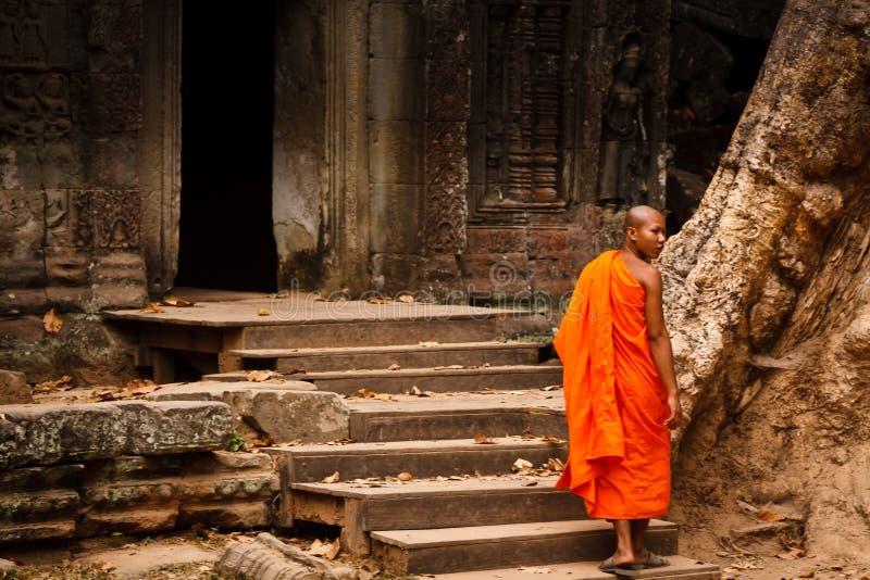 wat шафрана роб монаха angkor стоковое изображение rf