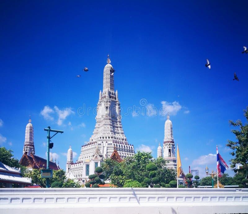 Wat Arun fotografering för bildbyråer
