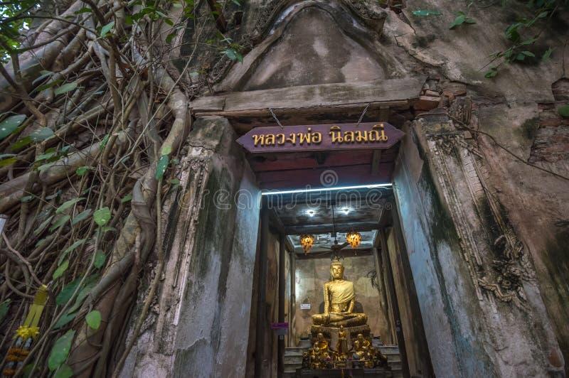 Wat Bang Kung, il tempio dell'albero di banyan, Amphawa, Tailandia fotografie stock libere da diritti
