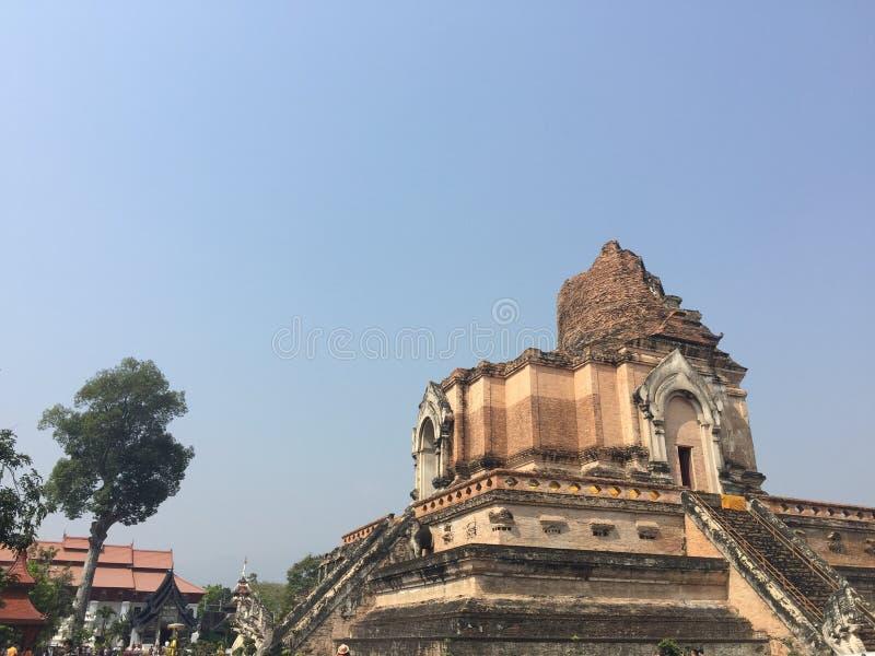 Wat Chedi Luang (大皇家stupa的寺庙老巨型的废墟塔),位于清迈,泰国 Wat Chedi Luang是 库存图片