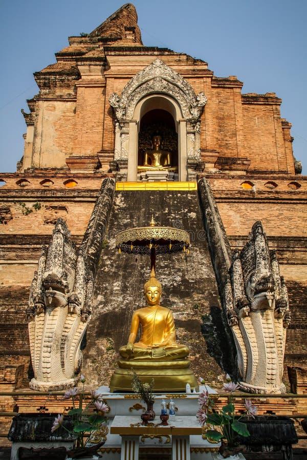 Wat Chedi Luang temple at sundown, Chiang Mai, northern Thailand. royalty free stock image