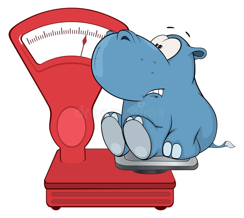 Wat hippo en een het wegen schaal beeldverhaal vector illustratie