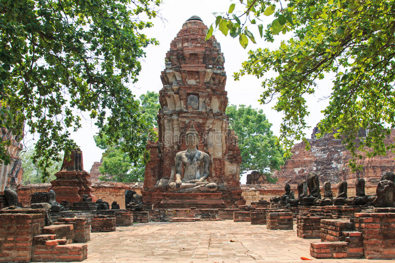 Wat Maha That em Ayutthaya, Tailândia foto de stock royalty free