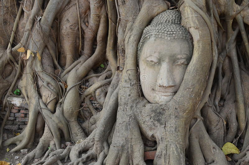 Wat Mahathat,阿尤特拉利夫雷斯 免版税库存照片