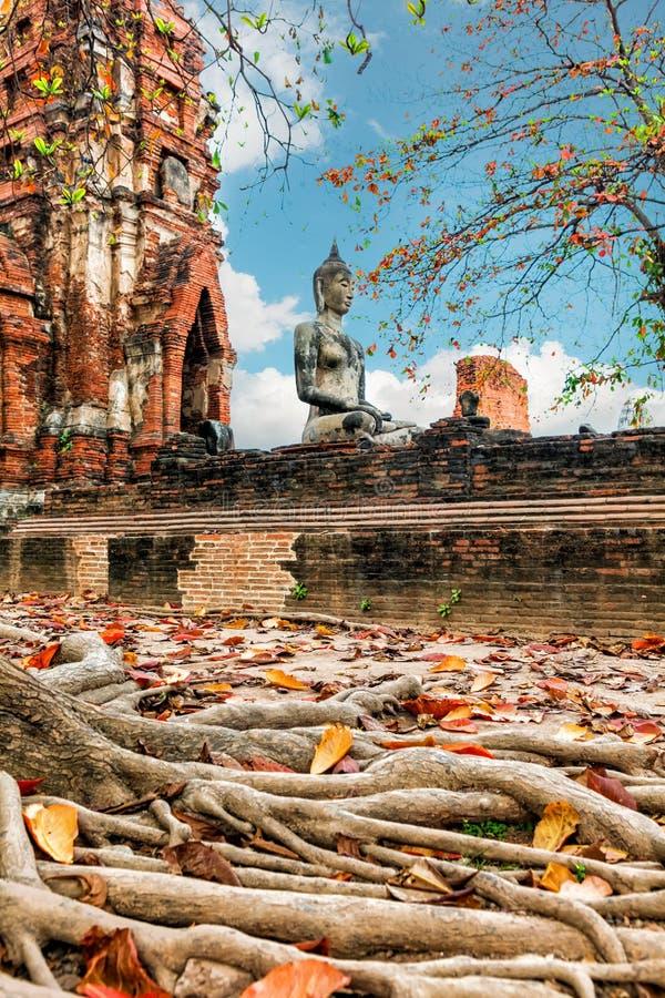 Download Wat Mahathat Im Komplex Des Buddhistischen Tempels In Ayutthaya Nahe Bangkok Thailand Stockfoto - Bild von statue, skulptur: 90236972