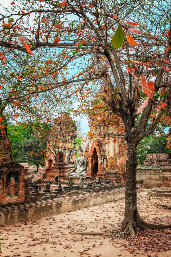 Download Wat Mahathat Im Komplex Des Buddhistischen Tempels In Ayutthaya Nahe Bangkok Thailand Stockfoto - Bild von himmel, blau: 90237130