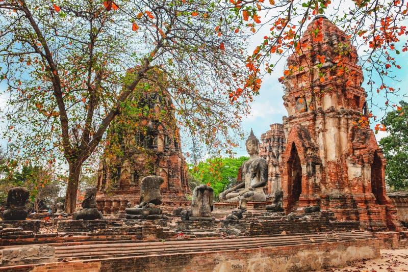 Wat Mahathat no complexo do templo budista em Ayutthaya perto de Banguecoque tailândia imagens de stock royalty free