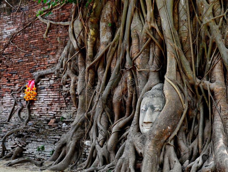 Download The stone Buddha head stock photo. Image of meditating - 29917626