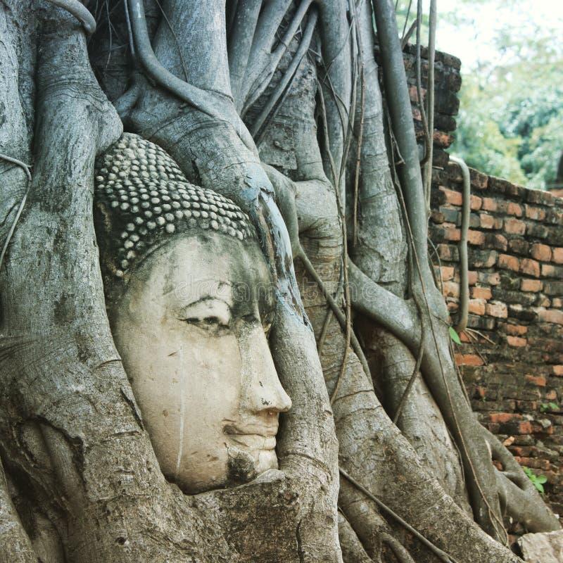 Wat Mahtathat, Ayuthaya, fotografía de archivo