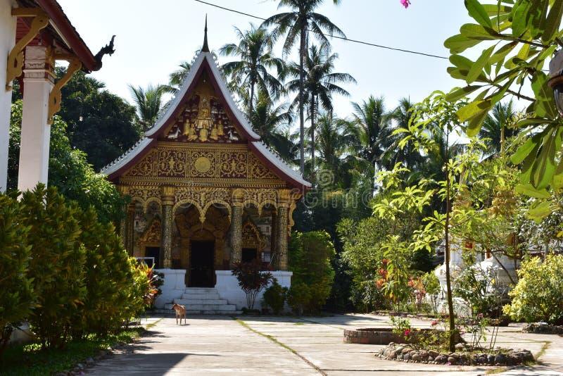 Wat Pa Phai arkivbilder