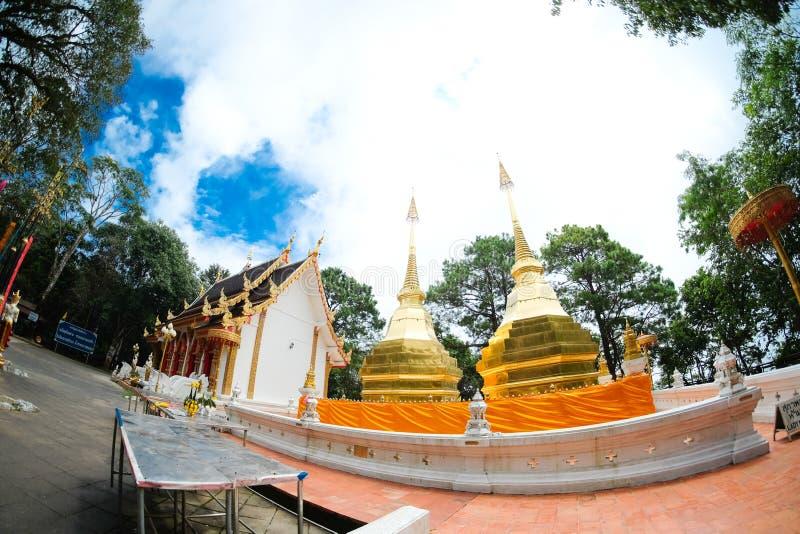 Wat Phra That Doi Tung na província de Chiangrai, do norte de Thaila imagens de stock