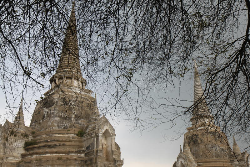 Wat Phra Sri Sanphet Temple en Thaïlande photos stock