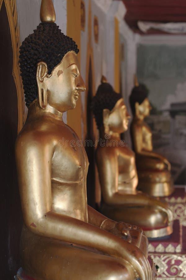wat suthep doi buddhas стоковые фотографии rf