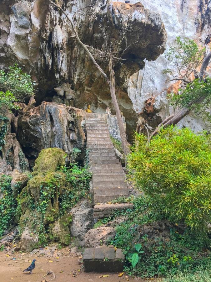 Wat Suwan Kuha, temple de caverne avec des singes, Thaïlande image libre de droits
