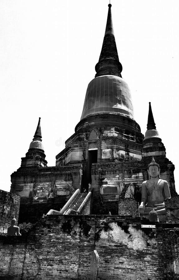 Wat Yai Chai Mong Kol royaltyfri bild