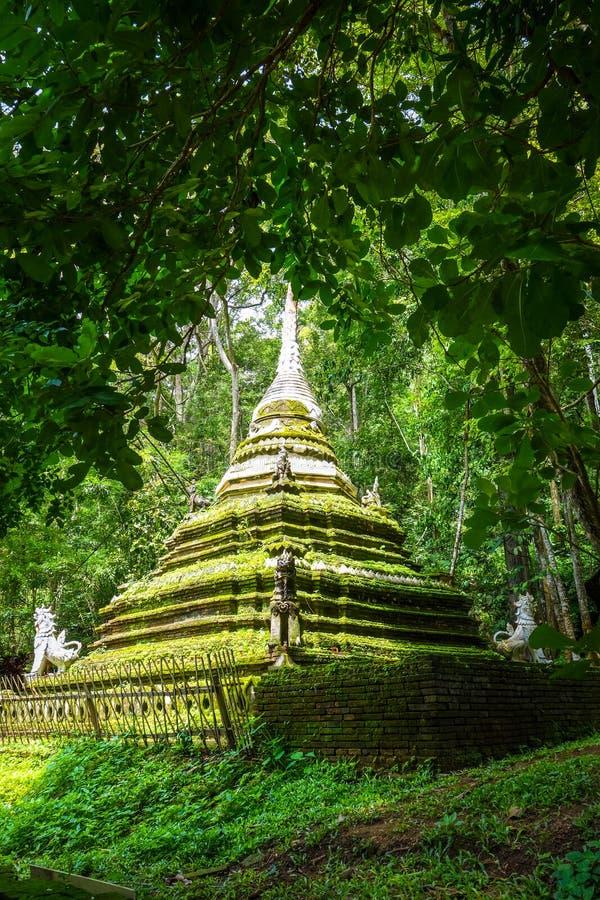 Wata Palad świątynna stupa, Chiang Mai, Tajlandia zdjęcie royalty free