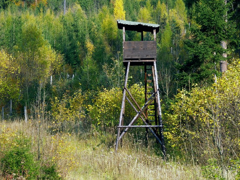 Watch tower. In forest near Likavka in Slovakia royalty free stock photos