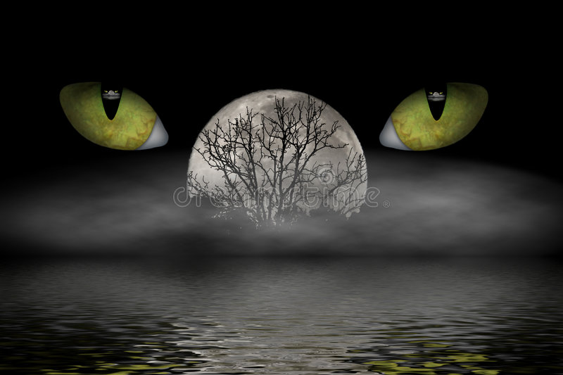The Watcher. Cat eyes watching while a misty fog rolls in and the moon rises