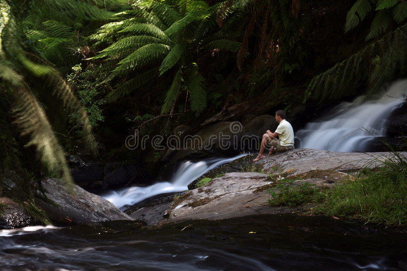 Download Watching the falls stock image. Image of waterfall, thinking - 5217771