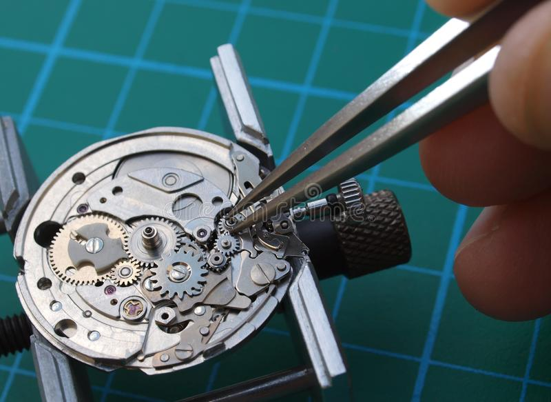Repairing old watch. Watchmaker reparing vintage watch mechanism taking small gear with tweezers royalty free stock photography