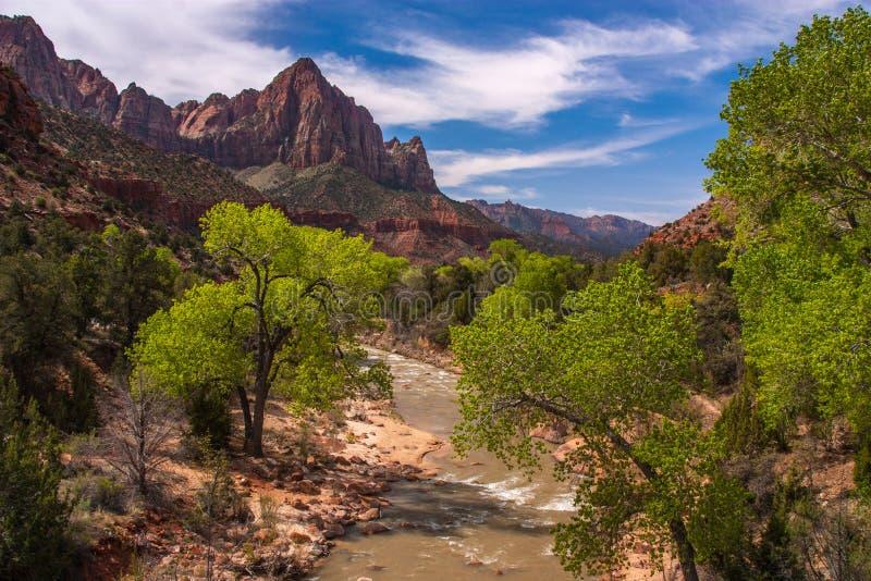 Watchman dziewicy i falezy rzeka, Zion park narodowy, Utah obraz royalty free