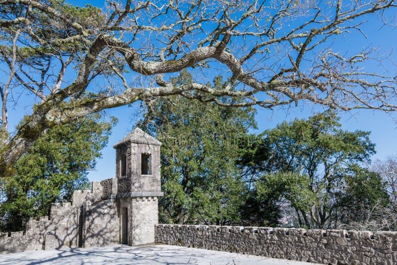 Watchtoweren av den gamla slotten i Portugal omgav vid träd mot den blåa himlen på en klar solig dag arkivfoto