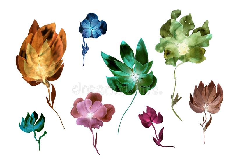 Watecolor set of transparent layered flowers. Floral composition in modern style. Watecolor set of transparent layered flowers. Hand painted elements isolated on royalty free illustration