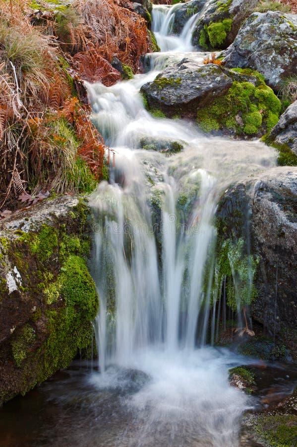 Free Water Royalty Free Stock Photo - 3355735