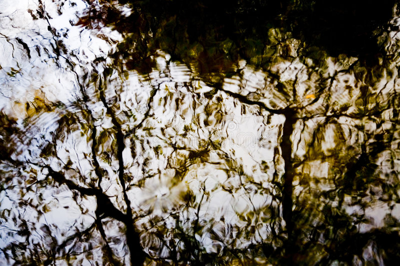 Water abstract. Abstract of water with trees reflection royalty free stock photography