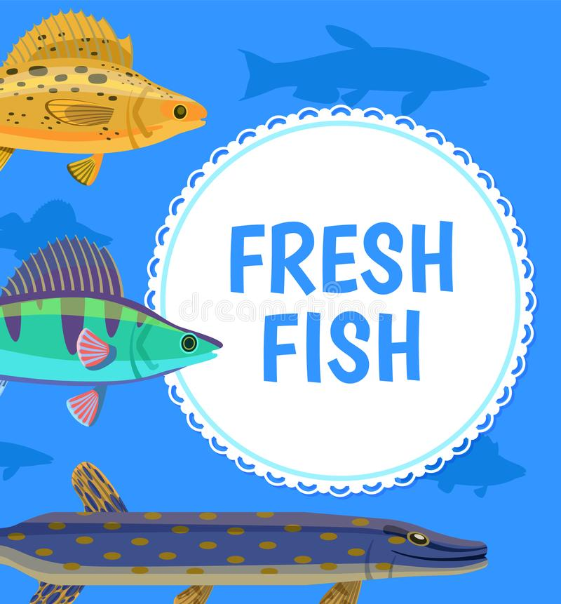 Water Animal, Fresh Fish Blue Postcard Vector vector illustration