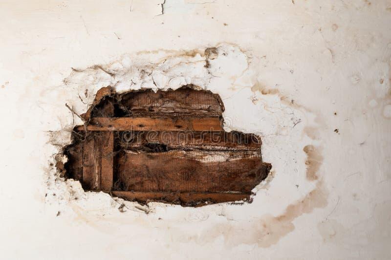 Water beschadigd plafond stock foto's