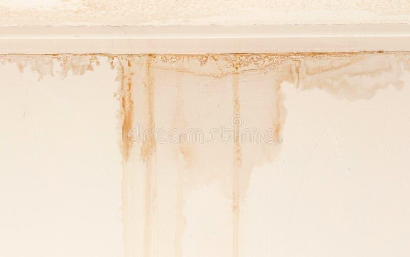 Water beschadigde plafond en muur stock afbeelding