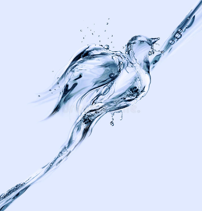 Free Water Bird Floating Up Royalty Free Stock Photography - 25323587