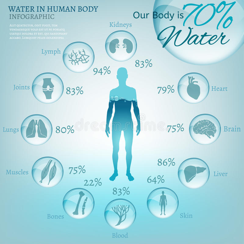 Water in Body stock photos