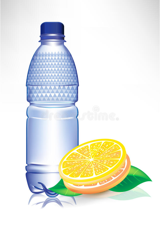 Water bottle with lemon slices and mint vector illustration